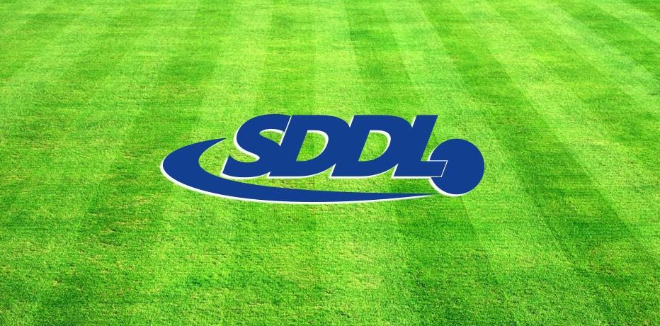 SDDL 1 en Ruwaard delen de punten