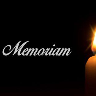 In Memoriam:  Jos van Leur